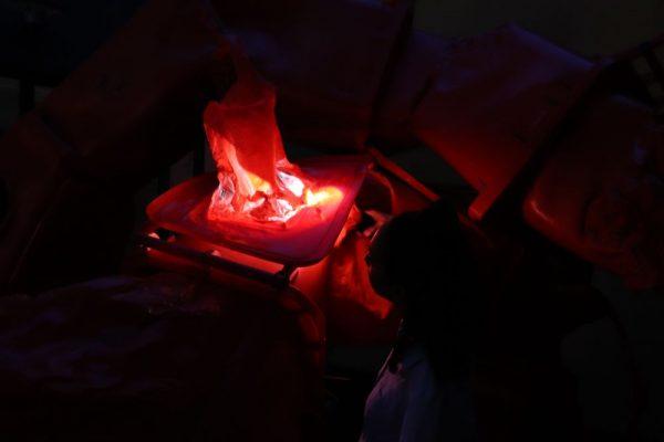 Visite nocturne à la lampe-torche